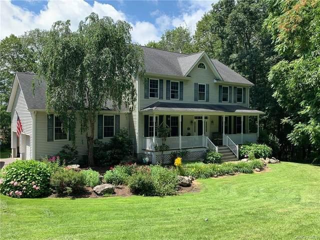 54 Folan Road, Amenia, NY 12501 (MLS #H6132128) :: Kendall Group Real Estate | Keller Williams