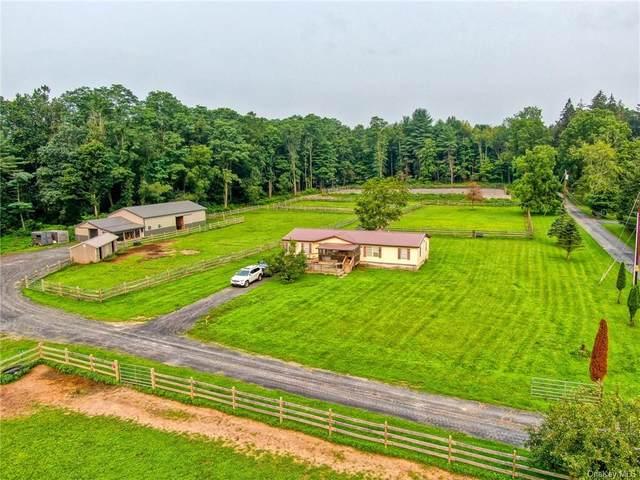 30 Echo Valley Road, Huguenot, NY 12746 (MLS #H6132132) :: Signature Premier Properties