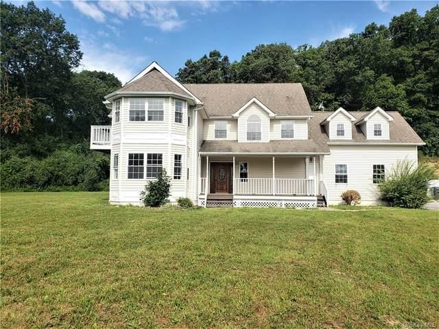 21 Daly Lane, Chester, NY 10918 (MLS #H6132151) :: McAteer & Will Estates | Keller Williams Real Estate