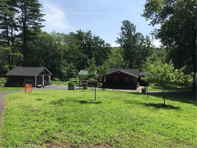 838 State Route 42 Route, Sparrowbush, NY 12780 (MLS #H6132290) :: Signature Premier Properties