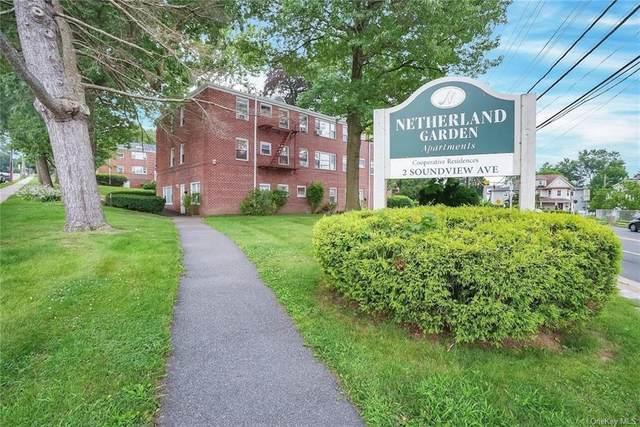 2 Soundview Avenue Aj, White Plains, NY 10605 (MLS #H6132427) :: RE/MAX Edge