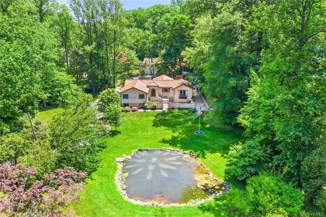49 Roosevelt Drive, Bedford Hills, NY 10507 (MLS #H6132445) :: Howard Hanna | Rand Realty