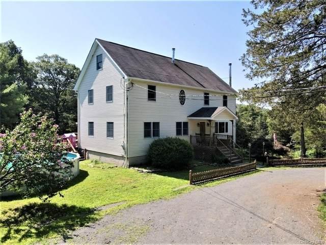 24 Fawn Hill Road, Blooming Grove, NY 10918 (MLS #H6132577) :: Howard Hanna | Rand Realty