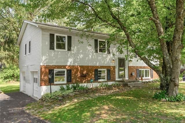 17 Mcallister Drive, Pleasant Valley, NY 12569 (MLS #H6132679) :: Carollo Real Estate