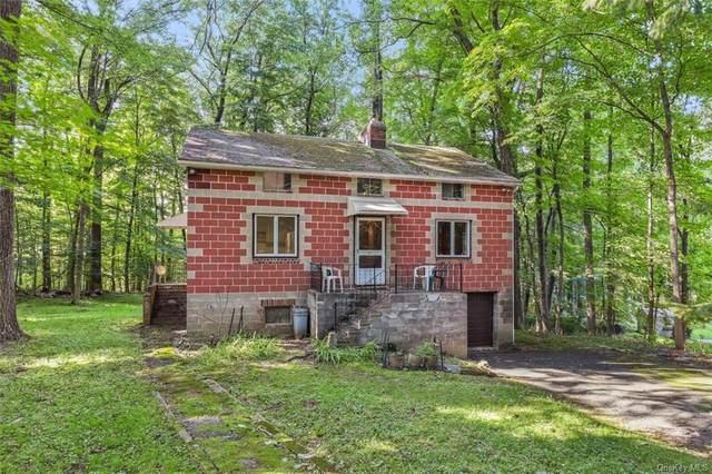 23 Lower Salem Road, South Salem, NY 10590 (MLS #H6132689) :: Carollo Real Estate