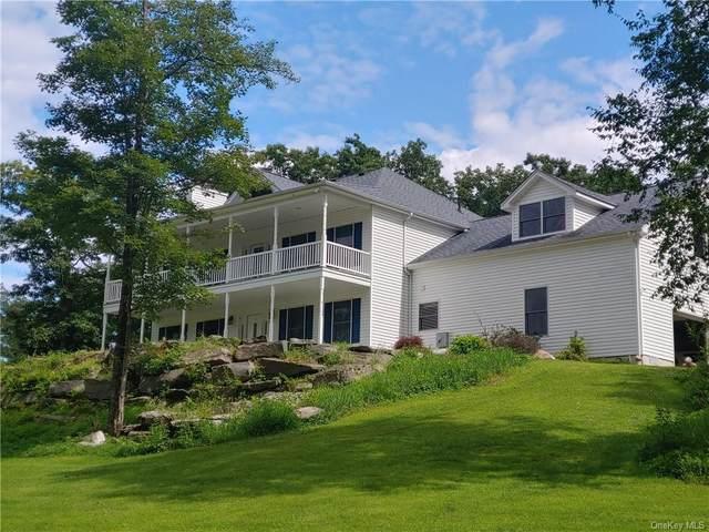 55 Little Road, Wurtsboro, NY 12790 (MLS #H6132804) :: Kendall Group Real Estate | Keller Williams