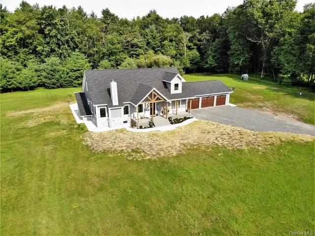 148 Segar Rosenberg Road, Swan Lake, NY 12783 (MLS #H6132809) :: Carollo Real Estate