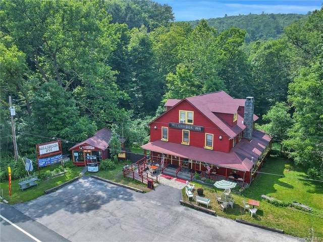 1774 State Route 97 Route, Pond Eddy, NY 12764 (MLS #H6132858) :: Howard Hanna Rand Realty