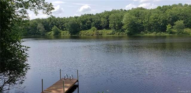 100 Lake Drive, Swan Lake, NY 12783 (MLS #H6132920) :: Signature Premier Properties