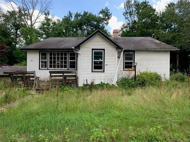 336 E Pond Road, Woodridge, NY 12789 (MLS #H6132972) :: Howard Hanna   Rand Realty