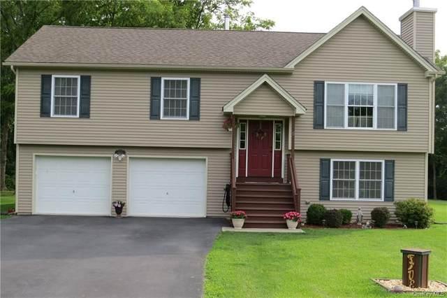 5 Sodrick Lane, Goshen, NY 10924 (MLS #H6133123) :: Signature Premier Properties