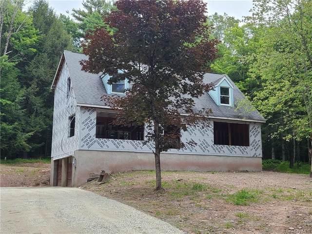 75 Barker Road, Eldred, NY 12732 (MLS #H6133131) :: McAteer & Will Estates   Keller Williams Real Estate