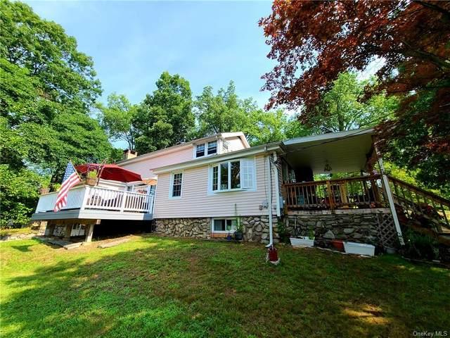 309 Maple Avenue, New Windsor, NY 12553 (MLS #H6133164) :: Howard Hanna | Rand Realty