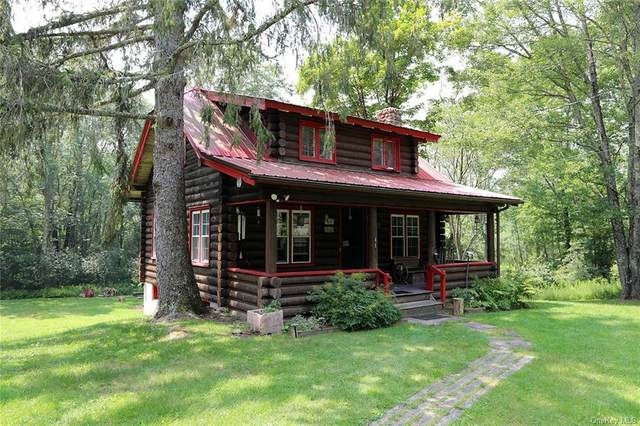 41 Old Route 52 Highway, Jeffersonville, NY 12748 (MLS #H6133177) :: Frank Schiavone with Douglas Elliman