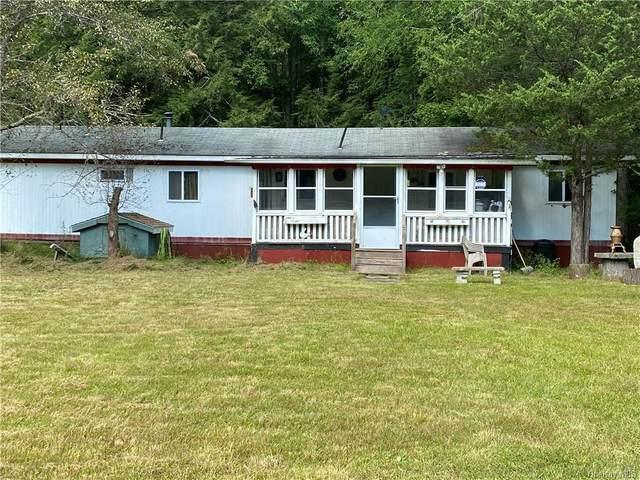 746 County Route 31, Glen Spey, NY 12737 (MLS #H6133211) :: Howard Hanna Rand Realty