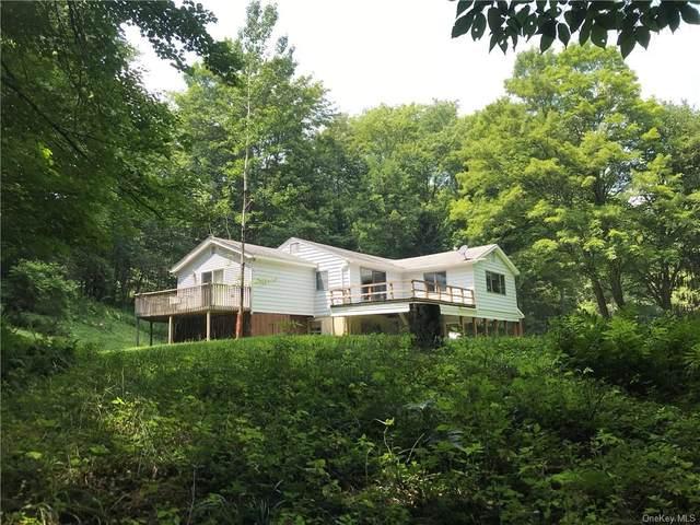 282 County Road 92, Roscoe, NY 12736 (MLS #H6133234) :: Howard Hanna Rand Realty
