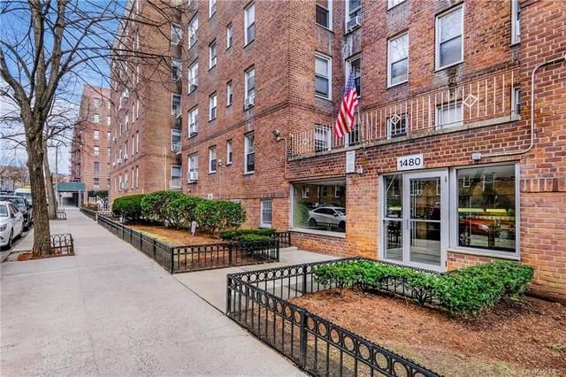 1480 Thieriot Avenue 4B, Bronx, NY 10460 (MLS #H6133271) :: Laurie Savino Realtor