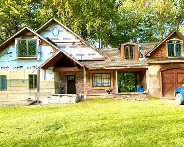 6 Nelson Place, Nanuet, NY 10954 (MLS #H6133283) :: Howard Hanna Rand Realty