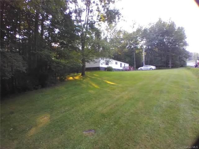 481 Hessinger Lare Road, Livingston Manor, NY 12758 (MLS #H6133284) :: Frank Schiavone with Douglas Elliman