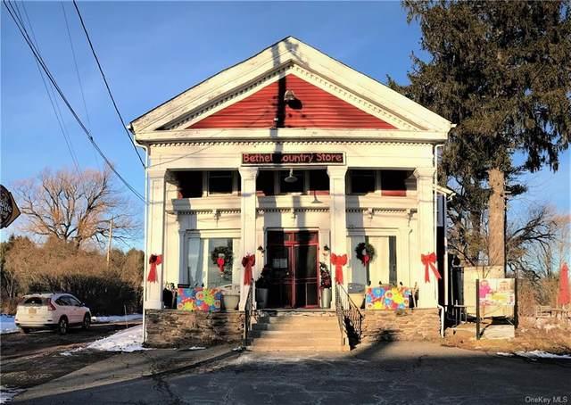 2020 Nys Hwy 17B, Bethel, NY 12720 (MLS #H6133292) :: Carollo Real Estate