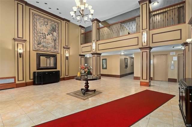 11 Park Avenue 2 L, Mount Vernon, NY 10550 (MLS #H6133371) :: McAteer & Will Estates | Keller Williams Real Estate