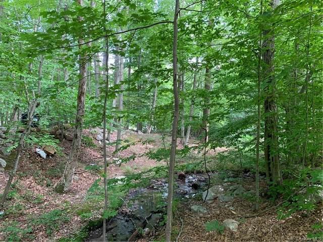 451 Oregon Trail, Pine Bush, NY 12566 (MLS #H6133384) :: Signature Premier Properties