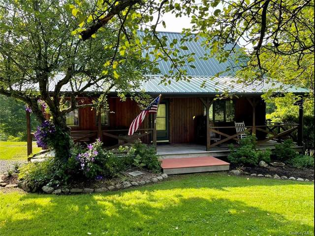204 Old Danzer Road, Livingston Manor, NY 12758 (MLS #H6133433) :: Frank Schiavone with Douglas Elliman
