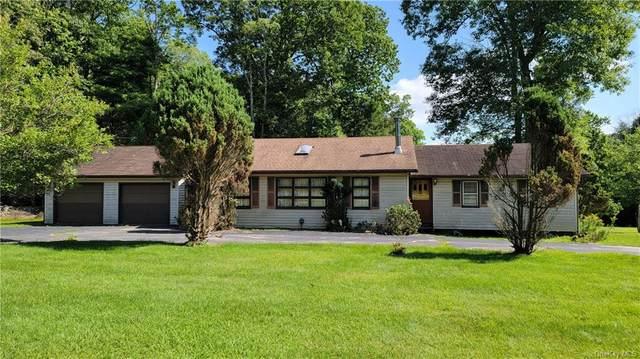 45 Mahls Pond Road, Narrowsburg, NY 12764 (MLS #H6133436) :: Howard Hanna | Rand Realty