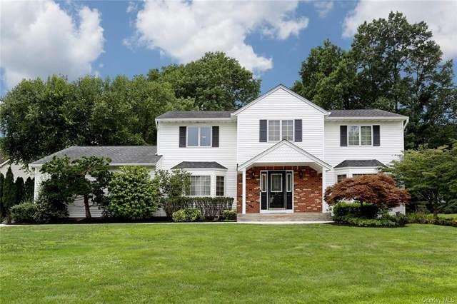 17 Shorn Drive, Blauvelt, NY 10913 (MLS #H6133444) :: Corcoran Baer & McIntosh
