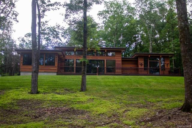 168 Springtown Road, New Paltz, NY 12561 (MLS #H6133447) :: The Clement, Brooks & Safier Team
