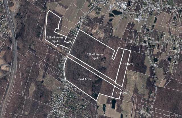 Route 44-55, Lloyd, NY 12515 (MLS #H6133466) :: Goldstar Premier Properties
