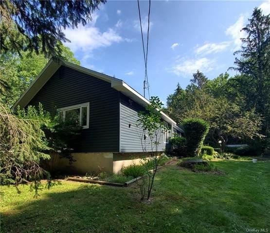 94 Mountain Road, Pine Bush, NY 12566 (MLS #H6133489) :: Howard Hanna | Rand Realty