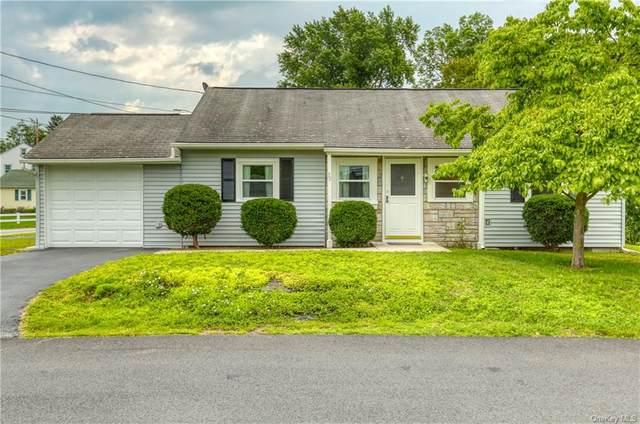 38 Dutchess Terrace, Beacon, NY 12508 (MLS #H6133547) :: Howard Hanna | Rand Realty