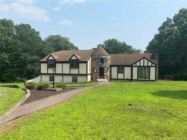 56 Tudor Lane, Pine Bush, NY 12566 (MLS #H6133548) :: Howard Hanna | Rand Realty