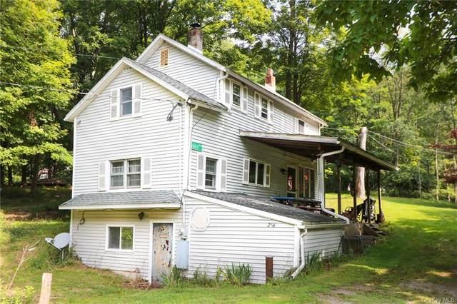 256 Mount Vernon Road, Wurtsboro, NY 12790 (MLS #H6133558) :: Howard Hanna | Rand Realty