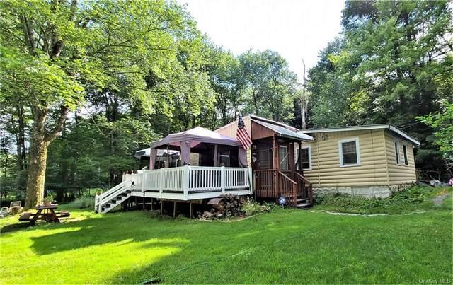 149 W Oak Street, Smallwood, NY 12778 (MLS #H6133566) :: Carollo Real Estate