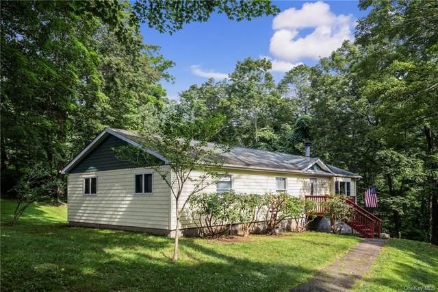 17 Deacon Smith Hill Road, Patterson, NY 12563 (MLS #H6133571) :: Howard Hanna Rand Realty