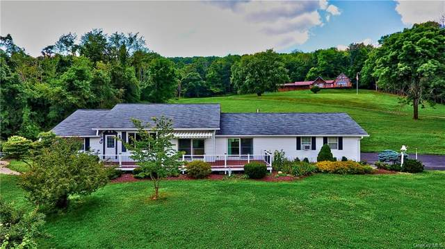 41 Stagecoach Trail, Middletown, NY 10940 (MLS #H6133572) :: Howard Hanna | Rand Realty