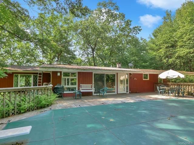 113 Homeyer Road, Sparrowbush, NY 12780 (MLS #H6133672) :: Howard Hanna Rand Realty