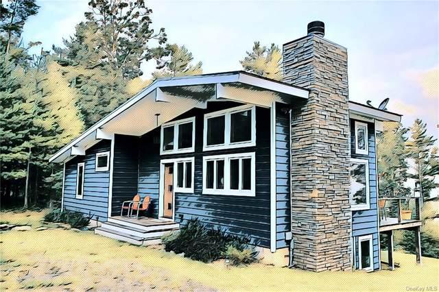Lot 37 Lake Ridge Road, Narrowsburg, NY 12764 (MLS #H6133712) :: Howard Hanna | Rand Realty