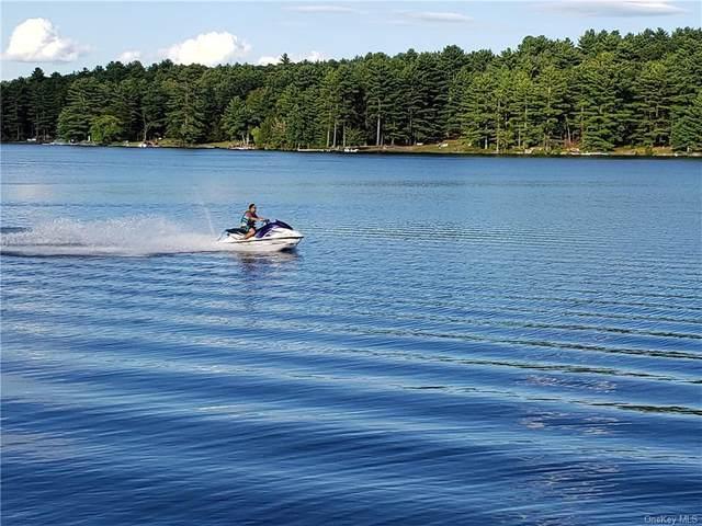 Otter & Mohawk Trail, Glen Spey, NY 12737 (MLS #H6133773) :: Howard Hanna Rand Realty