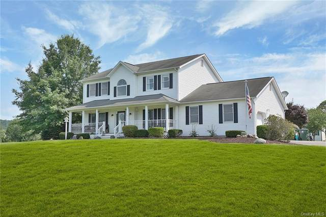54 Jared Court, Slate Hill, NY 10973 (MLS #H6133786) :: Signature Premier Properties