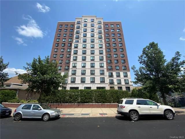 775 Lafayette Avenue 14A, Stuyvesant Hts, NY 11221 (MLS #H6133816) :: Goldstar Premier Properties