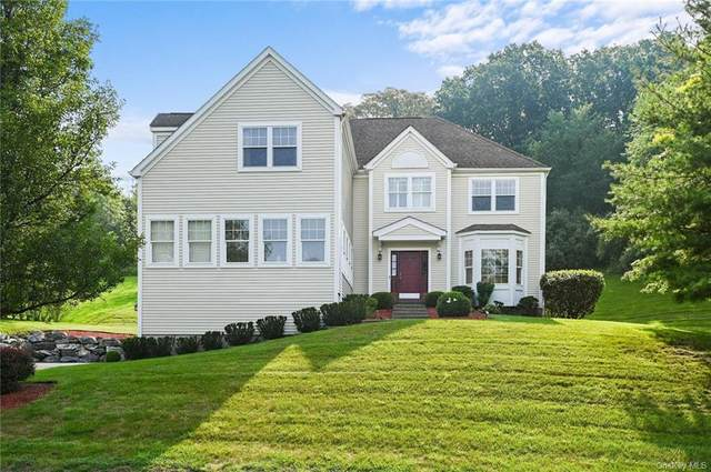 36 Roosevelt Drive, Poughquag, NY 12570 (MLS #H6133819) :: RE/MAX RoNIN