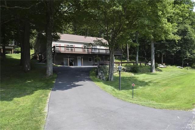 199 Gulf Road, Roscoe, NY 12776 (MLS #H6133922) :: Carollo Real Estate
