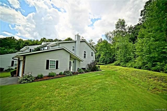 456 Meri Lane, Monroe, NY 10950 (MLS #H6133949) :: Goldstar Premier Properties