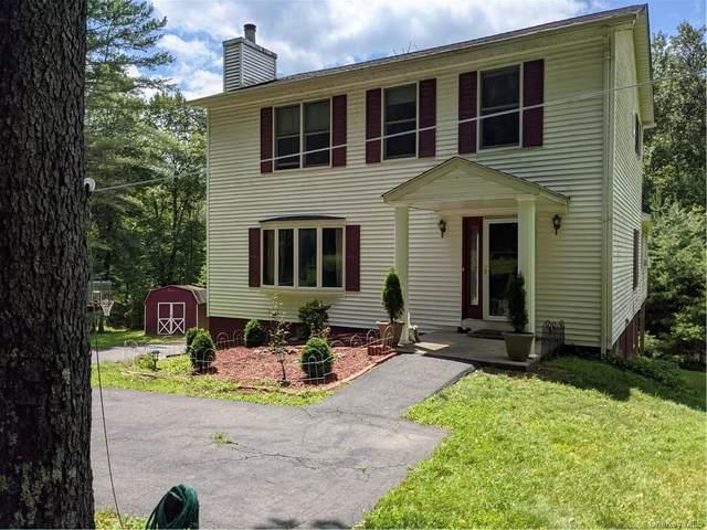 73 Old Tacy Road, Swan Lake, NY 12783 (MLS #H6133952) :: Signature Premier Properties