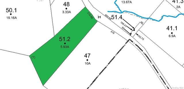 LOt 51.2 County Route 31 Route, Glen Spey, NY 12737 (MLS #H6133963) :: Howard Hanna Rand Realty