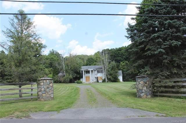 98 Canopus Hollow Road, Putnam Valley, NY 10579 (MLS #H6133970) :: Goldstar Premier Properties