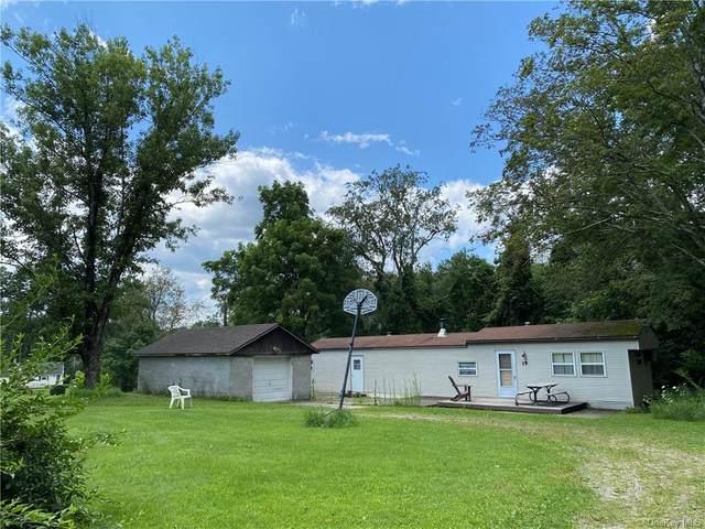 19 Dwy Lane, Wingdale, NY 12594 (MLS #H6134002) :: Cronin & Company Real Estate